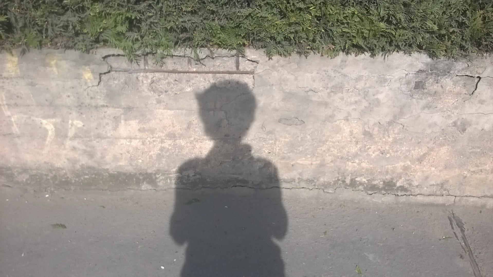 hikaru tenshin hokonono shadow